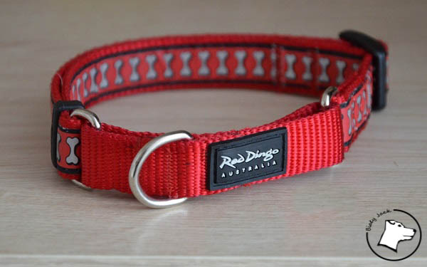 Test: obroża półzaciskowa martingale Red Dingo