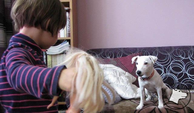 Pies i dziecko – czemu są przeciwstawiane?