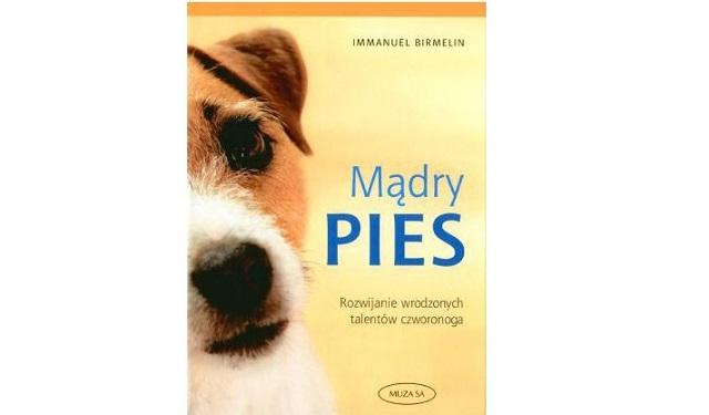 """Mądry pies"" Immanuel Birmelin"