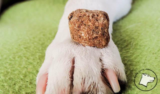 Doctor Dog Basic – wołowina z wieprzowiną – test i opinia