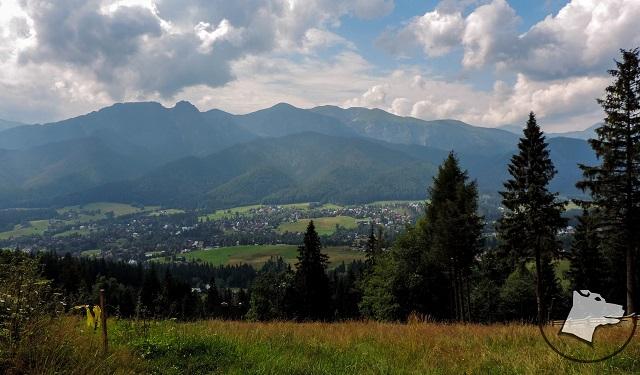Góry z psem: Gubałówka