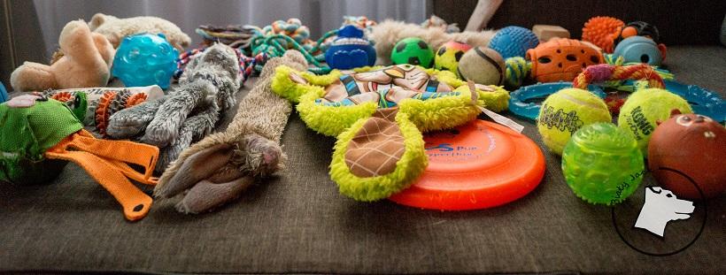 Przegląd psiej szafy cz. 3 – zabawki!