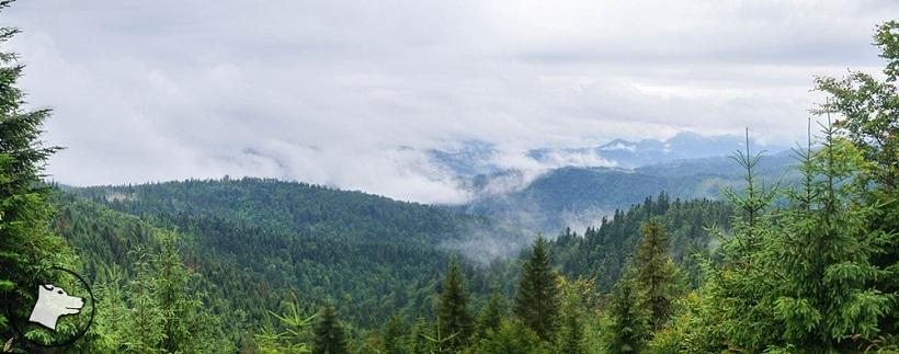 Góry z psem: Biała Woda – Radziejowa – Obidza