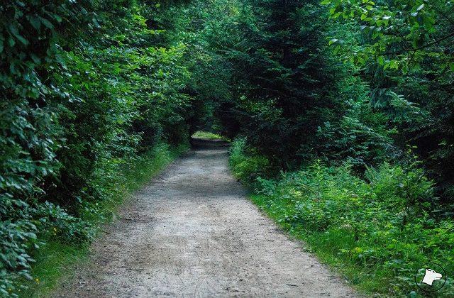 Trasa naStare Wierchy
