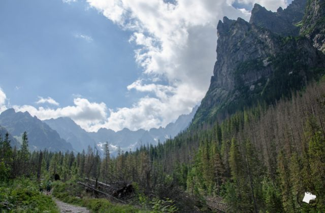 Bielovodska Dolina – droga do Polany nad Wysoką