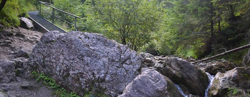 Góry z psem: Wąwóz Homole i Małe Pieniny