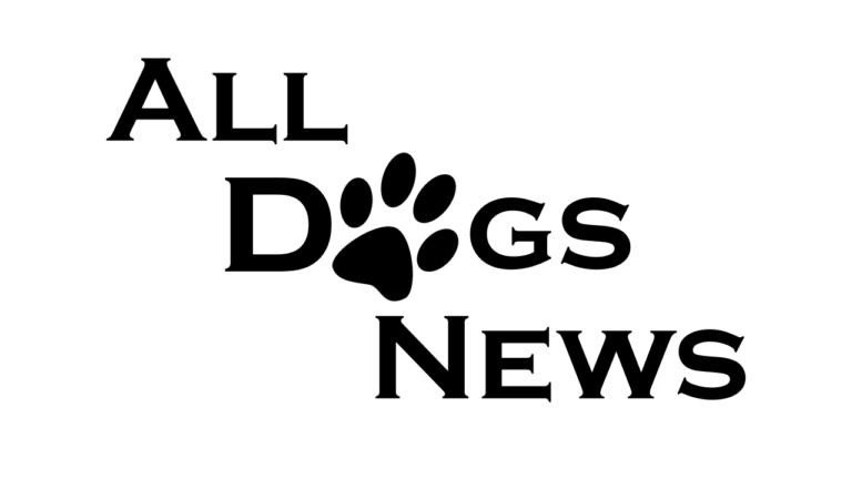 AllDogsNews – newsy ze świata psów | 1 | [FILM]