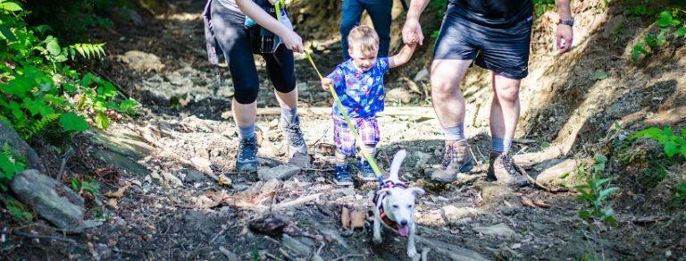 Lęk i inne emocje – jak przekazujemy je psu i dziecku?