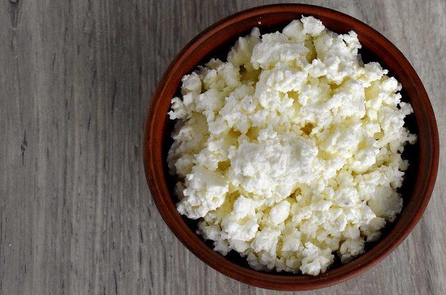 czy pies może jeść biały ser