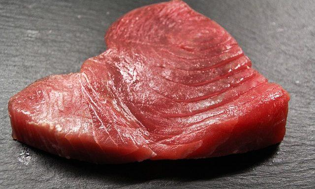 czy pies może jeść tuńczyka